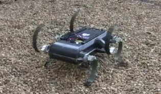 The RHex robot on outdoor terrain.