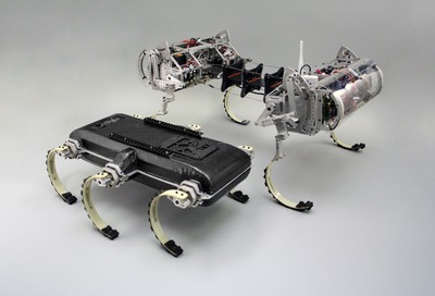 The XRL and Canid robots.